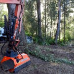 Excavator and bobcat cutting access
